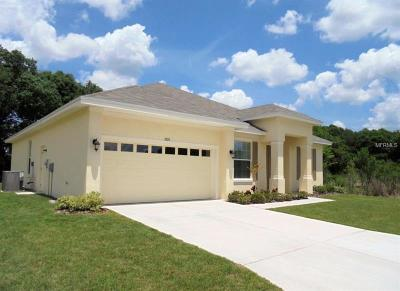 Lake County, Orange County, Osceola County, Polk County, Seminole County Single Family Home For Sale: 6933 Minaxi Drive