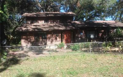 Tampa Single Family Home For Sale: 7405 Brooklyn Road