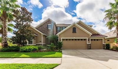 Tampa FL Single Family Home For Sale: $449,900
