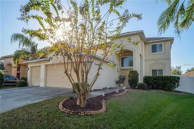 Hillsborough County, Pasco County, Pinellas County Single Family Home For Sale: 4218 Balington Drive