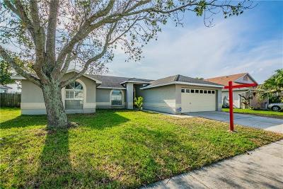 Hillsborough County, Pasco County, Pinellas County Single Family Home For Sale: 1614 Storington Avenue