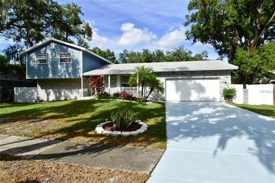 Hernando County, Hillsborough County, Pasco County, Pinellas County Single Family Home For Sale: 115 Windy Place
