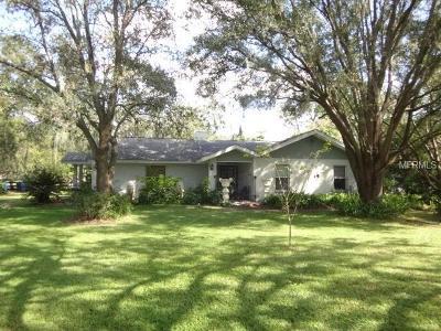 Single Family Home For Sale: 4165 El Shaddiai Square