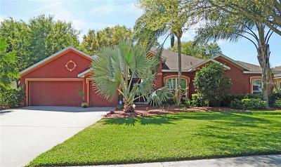 Valrico Single Family Home For Sale: 2307 Timbergrove Drive