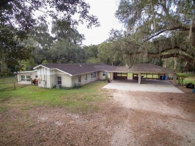 Lithia Single Family Home For Sale: 1641 Thompson Road