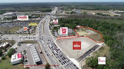 Wesley Chapel Residential Lots & Land For Sale