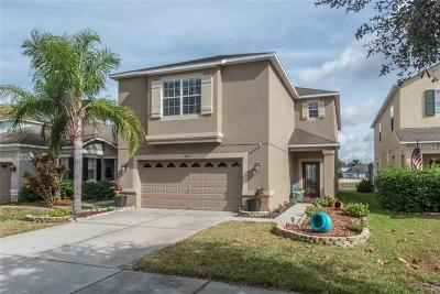 Ruskin Single Family Home For Sale: 15512 Long Cypress Drive Drive