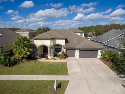 Wesley Chapel Single Family Home For Sale: 1455 Beaconsfield Drive