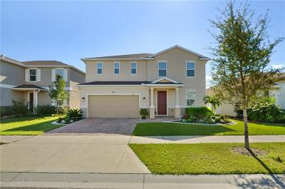Riverview Single Family Home For Sale: 11517 Luckygem Drive