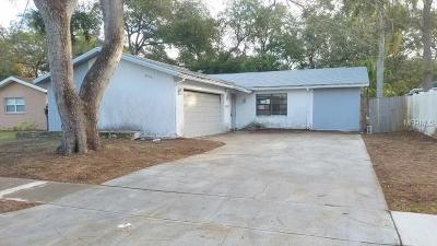 Clearwater Single Family Home For Sale: 2846 Eagle Run Circle E