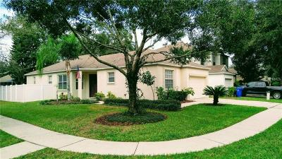 Lithia Single Family Home For Sale: 6105 Kiteridge Drive
