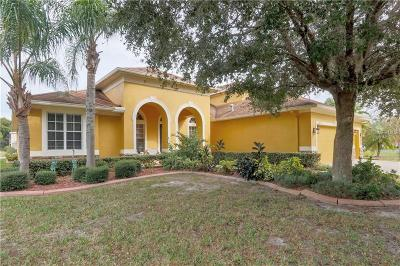 Tampa Single Family Home For Sale: 5921 Jefferson Park Drive
