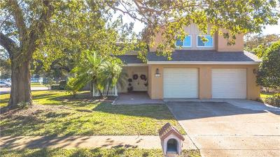 Tampa Single Family Home For Sale: 4602 Landscape Drive