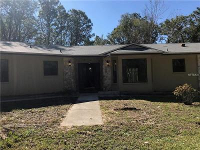 Brooksville Single Family Home For Sale: 26311 Willow Street