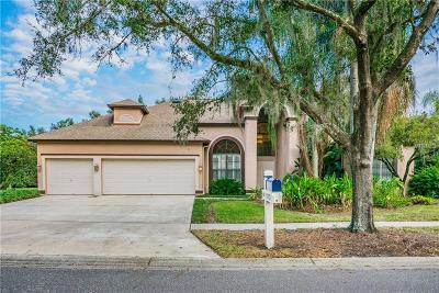 Valrico FL Single Family Home For Sale: $439,000