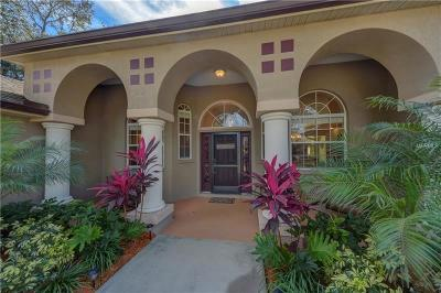 Ruskin, Riverview Single Family Home For Sale: 9551 Riverview Drive