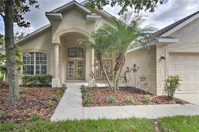 Lithia Rental For Rent: 6122 Whimbrelwood Drive
