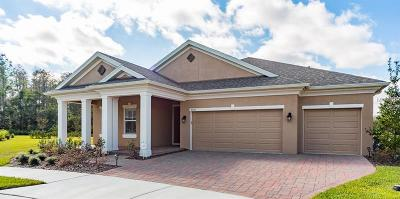 New Port Richey Single Family Home For Sale: 4081 Natural Vista Court