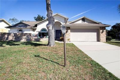 Valrico Single Family Home For Sale: 2318 Sunview Avenue
