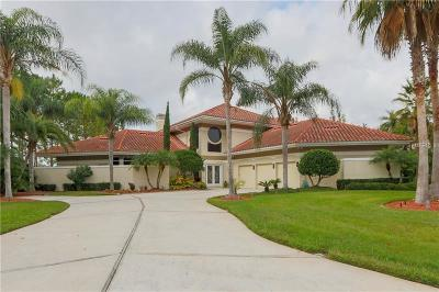 Lutz FL Single Family Home For Sale: $1,200,000