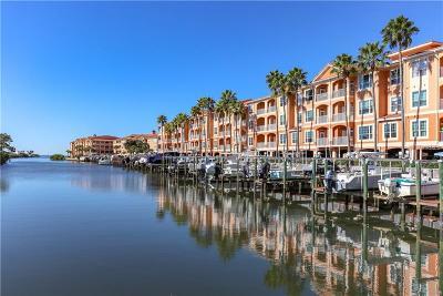 Tampa Condo For Sale: 5000 Culbreath Key Way #8202