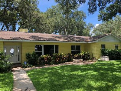 Temple Terrace Single Family Home For Sale: 616 Halliewood Avenue