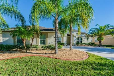 Tampa Single Family Home For Sale: 20254 Ravens End Drive