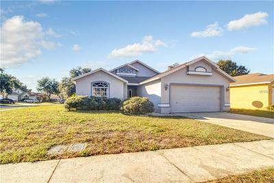 Plant City Single Family Home For Sale: 4630 Copper Lane
