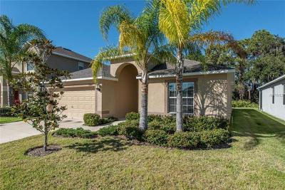 Wimauma Single Family Home For Sale: 16645 Myrtle Sand Drive