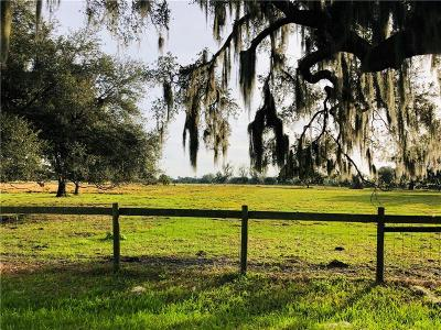 Plant City Residential Lots & Land For Sale: Horseshoe Hills Place