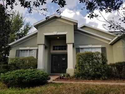 Wesley Chapel Single Family Home For Sale: 29753 Cedar Waxwing Drive