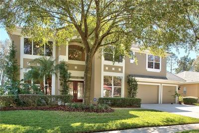 Tampa Single Family Home For Sale: 18117 Regents Square Drive