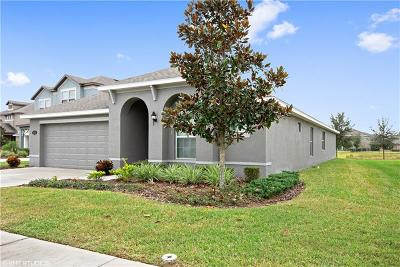 Tampa Single Family Home For Sale: 19218 Verdant Pasture Way