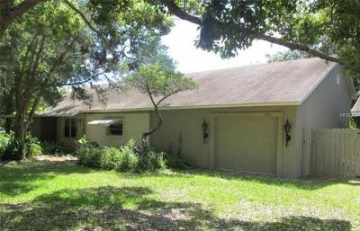 New Port Richey, New Port Richie Single Family Home For Sale: 9610 Lakeview Drive