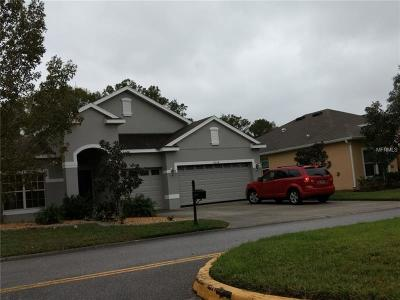 New Port Richey Single Family Home For Sale: 11254 Belle Haven Drive