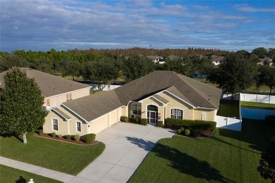 Hillsborough County Single Family Home For Sale: 11843 Newberry Grove Loop