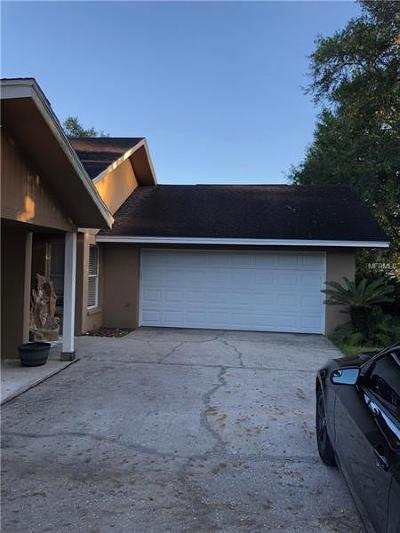 Hernando County, Hillsborough County, Pasco County, Pinellas County Single Family Home For Sale: 3421 N Forbes Road