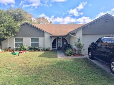 Tampa Single Family Home For Sale: 15723 Woodshed Pl