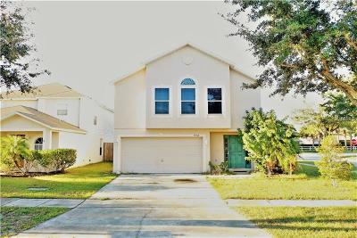 Hernando County, Hillsborough County, Pasco County, Pinellas County Single Family Home For Sale: 11162 Summer Star Drive