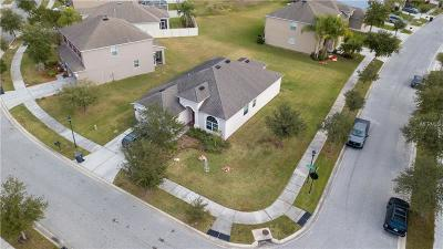 Tampa Single Family Home For Sale: 11045 Ancient Futures Drive