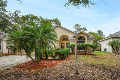 Hillsborough County Single Family Home For Sale: 625 Somerstone Drive