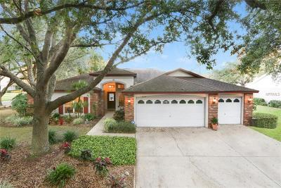 Valrico Single Family Home For Sale: 3806 Harrogate Drive
