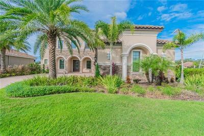 Tampa Rental For Rent: 9105 Tillinghast Drive