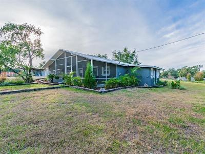 Dade City Single Family Home For Sale: 40832 River Road