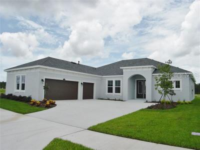 Hernando County, Hillsborough County, Pasco County, Pinellas County Single Family Home For Sale: 16599 Chord Drive