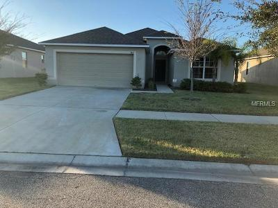 Hernando County, Hillsborough County, Pasco County, Pinellas County Single Family Home For Sale: 748 Tanana Fall Drive
