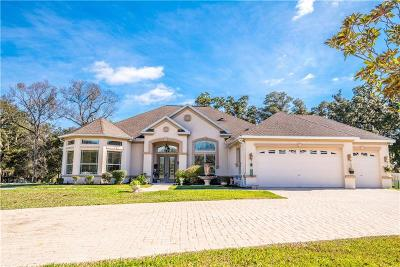 Brooksville Single Family Home For Sale: 7050 Quarterhorse Lane