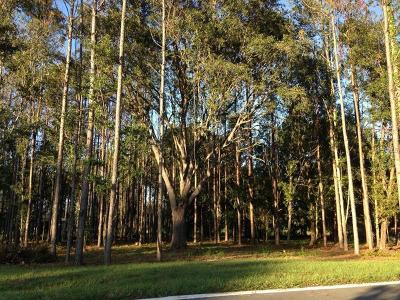 Lutz Residential Lots & Land For Sale: 17028 Midas Lane