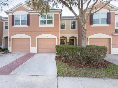 Wesley Chapel Townhouse For Sale: 26604 Chimney Spire Lane