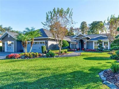 Tampa Single Family Home For Sale: 3208 Stoneybrook Lane